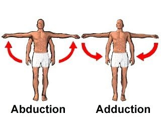 Abduction/Adduction