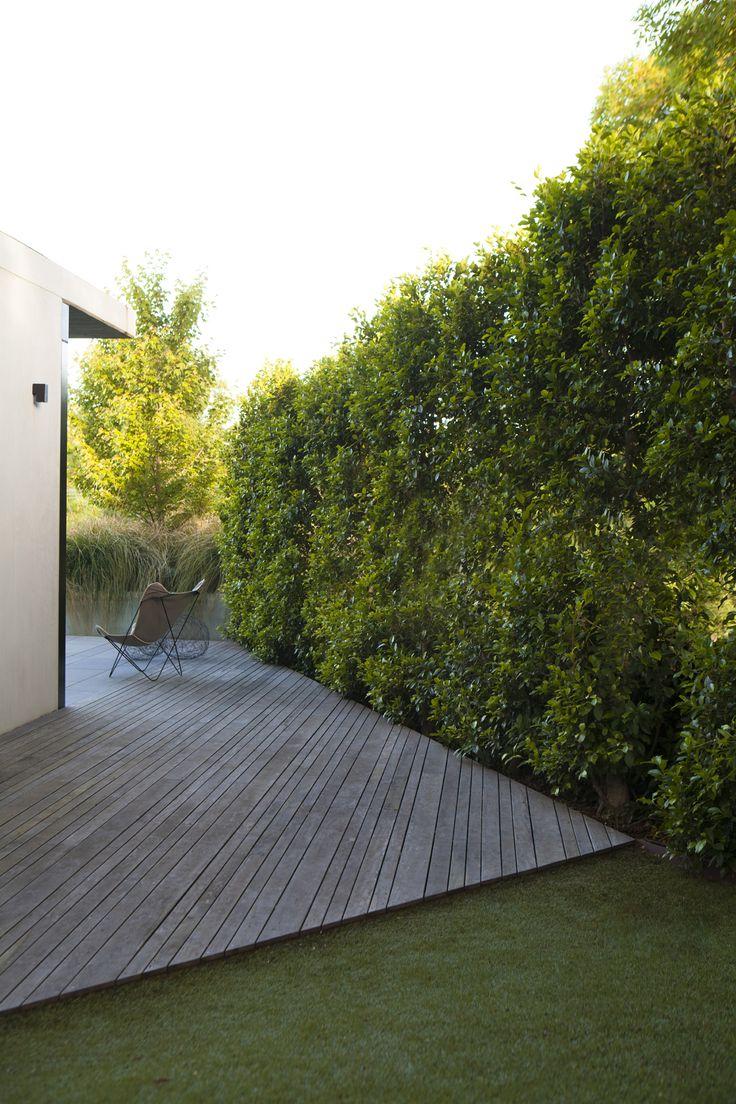 Ben Scott - Garden Design - The Boulevard