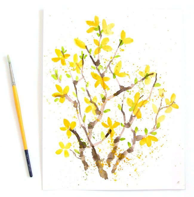 Paint watercolor flowers forsythia search watercolor for How to paint watercolor flowers step by step