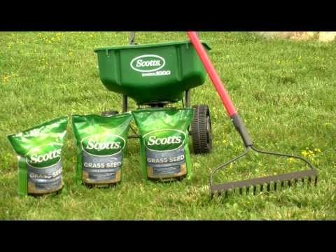 Some of the best grass seed to start with: http://amzn.to/1T3B1t3 Whether you're going to be planting grass seed for a new lawn or over existing grass, these...