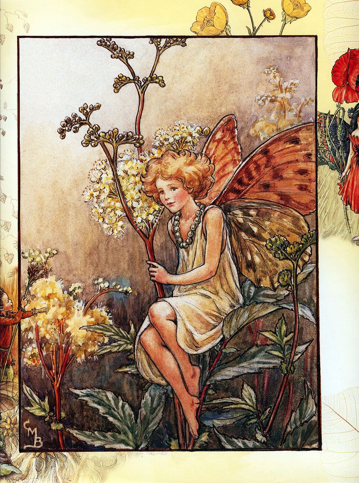 CICELY MARY BARKER | Queen of the Meadow Fairy - Cicely Mary Barker (1934)