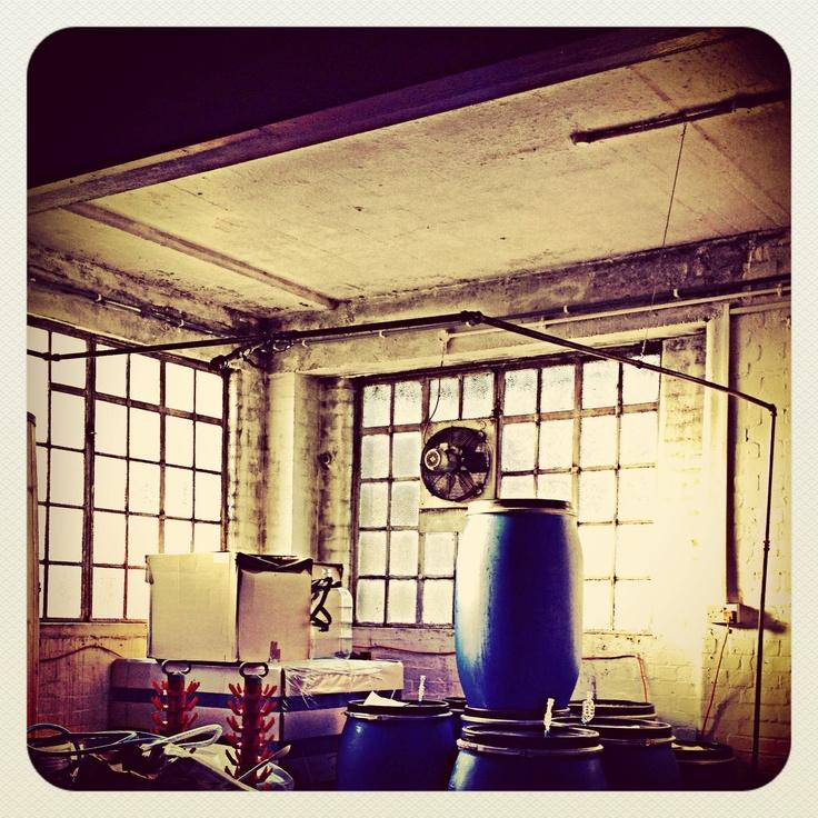 Brupond brewery in Walthamstow