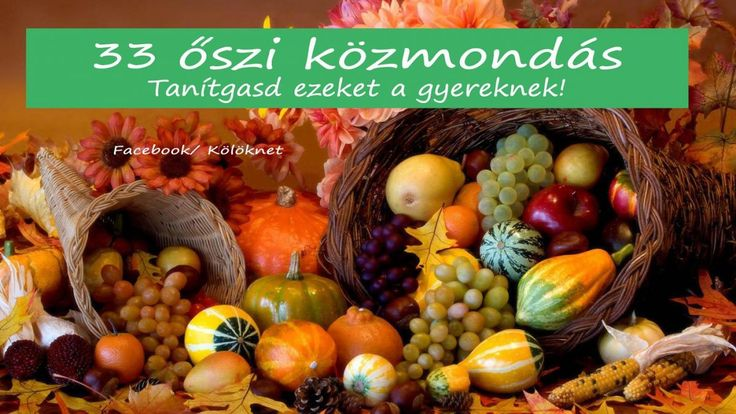 33 közmondás őszi terményekről - Taníts meg közülük párat a gyereknek! Népi bölcsességek, amelyek formálják a gyerekek gondolkodását!