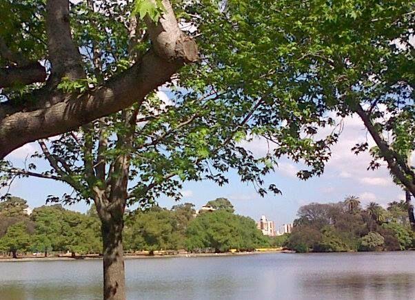 Encuentros Saludables: Caminata por los lagos de Palermo con meditación caminando