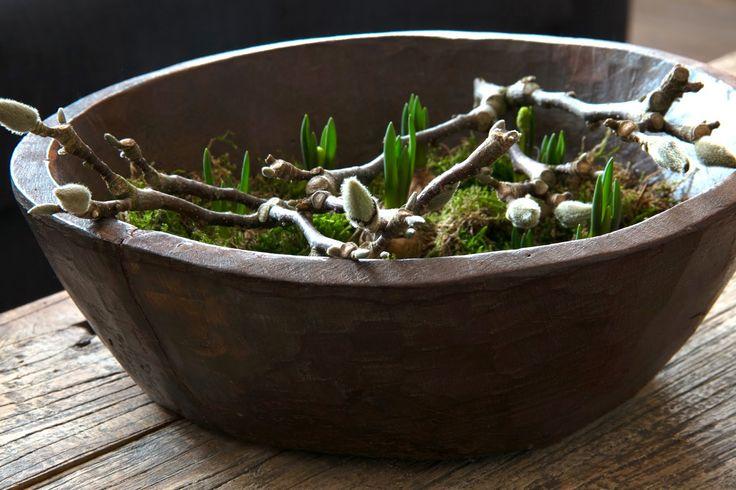 magnolia tak - mos eitjes