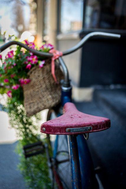 bicicleta con flores rosas