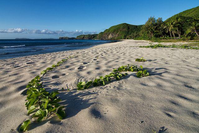 Isole Figi: lusso e povertà sotto lo stesso cielo stellato