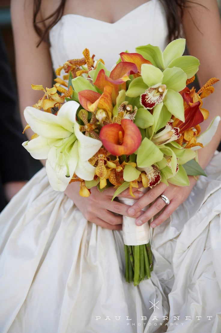 orchid flower for wedding 35 best images about bouquets tropical colors on 6289