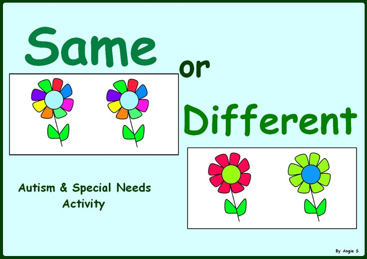 Same or Different Sorting -Autism & Special Needs Activity
