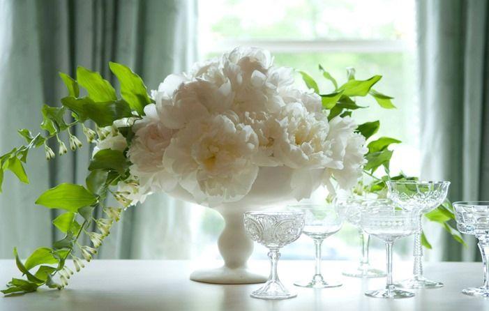 10333820_10152465255208536_2698210581817530927_o  Casa de Perrin photo and winston flower s