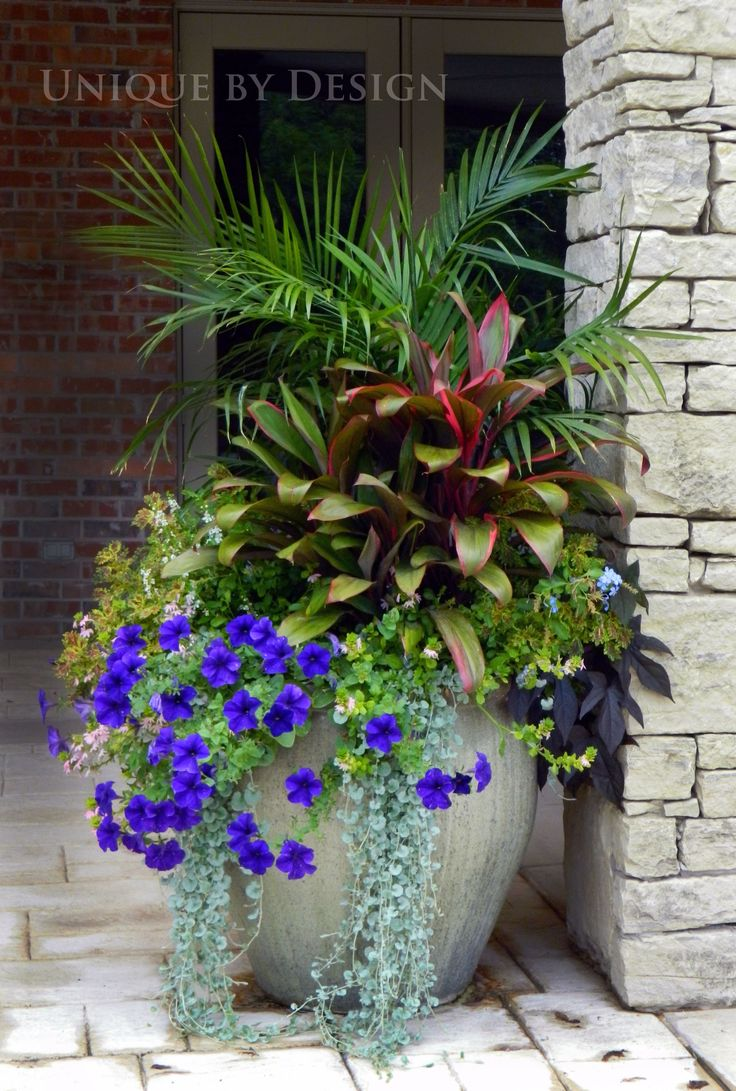 a group planting in one large container is much more dramatic on your porch than several blue flowerspotted