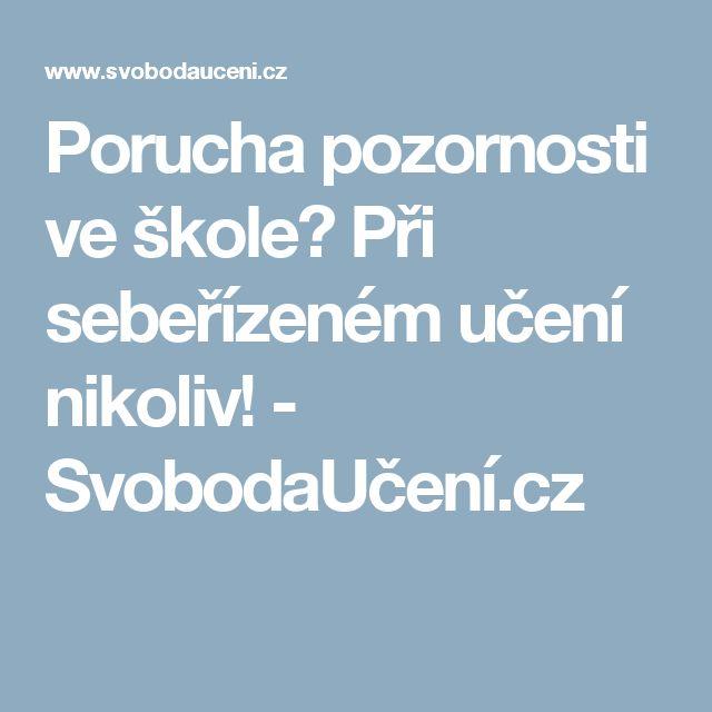 Porucha pozornosti ve škole? Při sebeřízeném učení nikoliv! - SvobodaUčení.cz