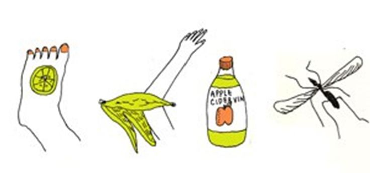 There are few things peskier in the summer than an unexpected mosquito bite swelling up on your arms and legs. Fortunately, there are many ways to heal your body of its annoying itch, ranging from fruit (lemon slices and banana peels) to common household items (baking soda, apple cider vinegar). So the next time you are bitten by a mosquito, raid your refrigerator, kitchen pantry or medicine cabinet for a quick and easy DIY remedy that requires no extra trip to the pharmacy. Make sure to…