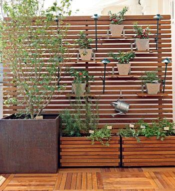 Uma horta orgânica que é um luxo
