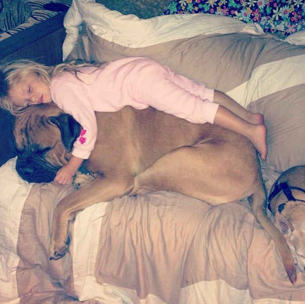This dog who turns into a couch whenever this little girl needs a nap. | 23 Dogs Who Really Love Their Best Friend