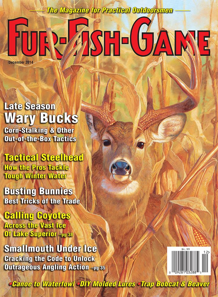 41 best images about fur fish game magazine covers on for Fur fish and game