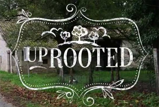 UpRooted UpRooted follows the adventures of North American mom and food lover, Sarah Sharratt as she navigates her way through her new life in rural France. UpRooted with Sarah Sharratt on Gusto TV Canada UpRooted with Sarah Sharratt on the Cooking Channel US Sarah Sharratt: My Life in France on Lifestyle Food, Foxtel Australia …