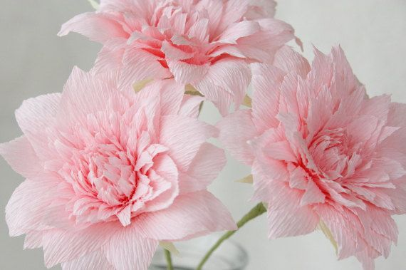 3 Pink Crepe Paper Dahlias Paper Dahlia Dahlia by PAPERandBEAUTY