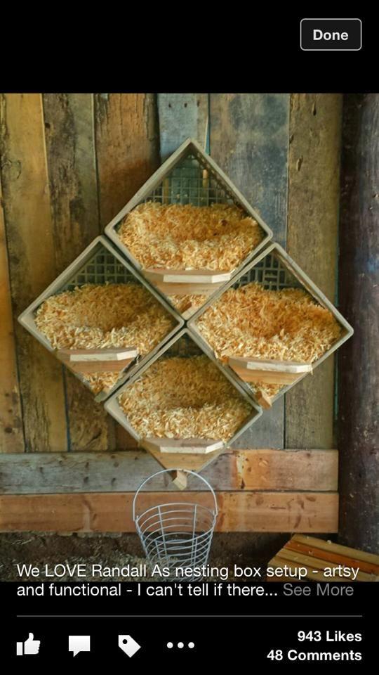 Milk Crate Nesting Boxes