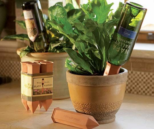 Wine Bottle Plant Nanny -- might this be a way for me to have plants??