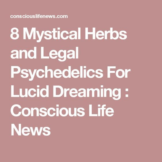 8 Mystical Herbs and Legal Psychedelics For Lucid Dreaming : Conscious Life News