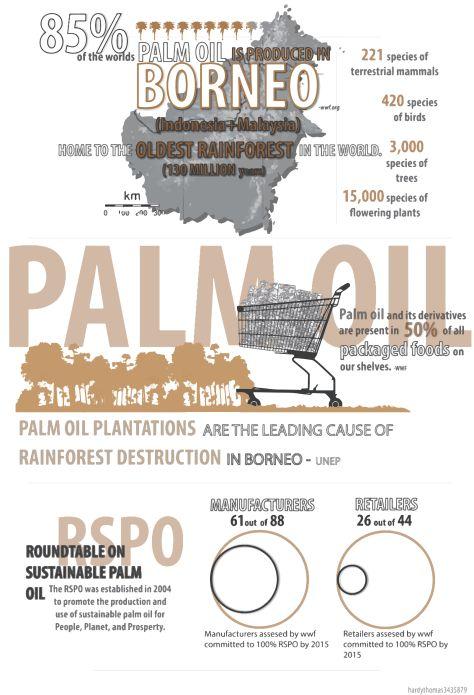 http://onegr.pl/1txNvKV  #palmoil, #rainforest,
