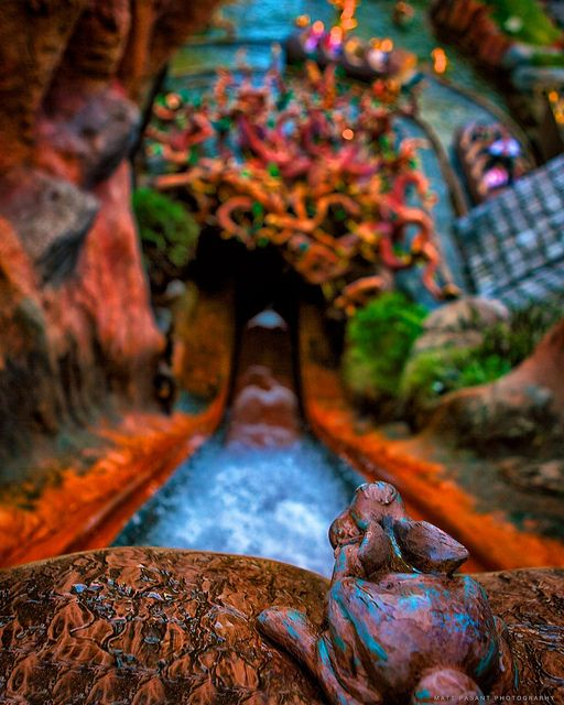 Splash Mountain, possibly the best ride at WDW! I once rode this at night three times in a row right before the park closed!