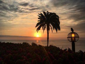 Encantada por este belleza #mirafllores #tramonto #sunset #sunsets #sunsetsky #nature #natura #puestadesol #sol #sole #sun #pacific #oceano #oceanopacífico #sky #skyporn #sunsetporn #pajaros #oceano #belleza #bellezanatural #peru #peru #travellingthroughtheworld #travelling #traveller #viajes #viaje #viajandoporelmundo