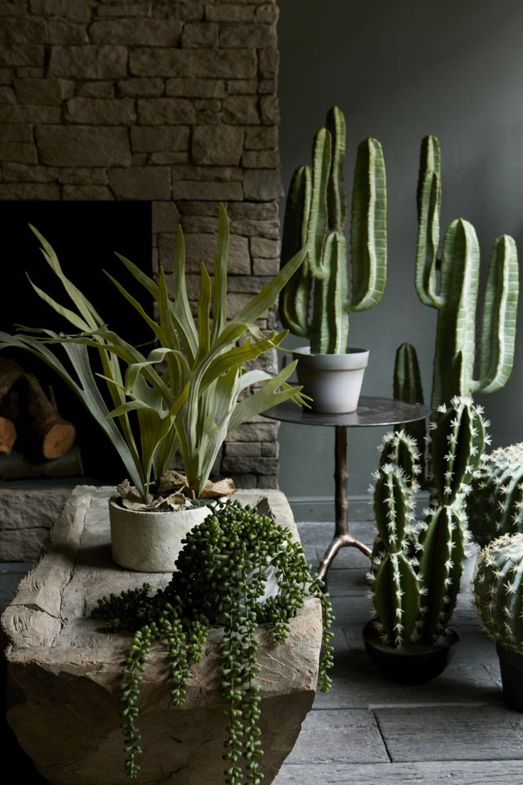 Beautiful artificial plants from Abigail Ahern