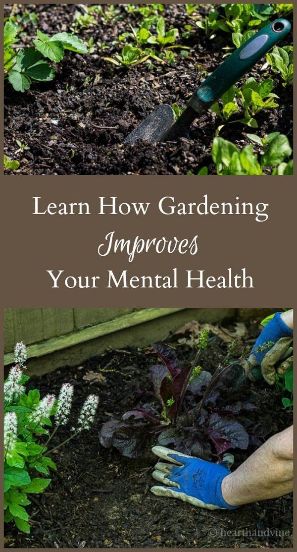 Not only working in the garden can improve your physical health, but it can also your improve mental health too. Check out these 9 ways!