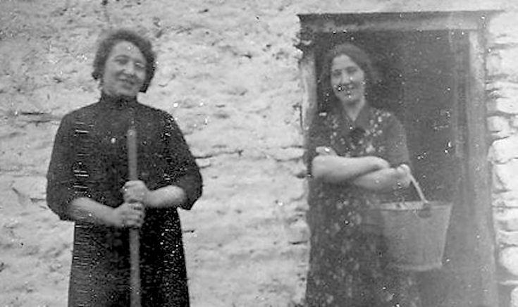 Census Substitutes in Irish Genealogical Research - By Ireland Genealogist Helen Kelley