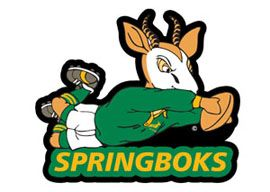 springboks mascot adult SAR MAG-04 .jpg (270×192)