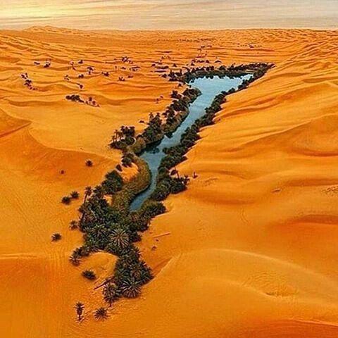 En el lugar mas inesperado yace siempre la oportunidad.  Nunca pierdas la esperanza #autanaenlacima  #Repost @awesome.pix  Follow @discover_earthpix for more beautiful photos Libya photo by Walerian Walawski