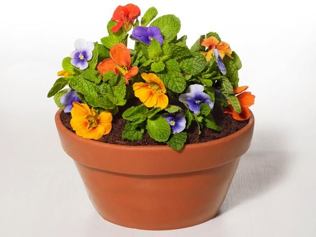 How to Make a Flowerpot Cake | This fake-out dessert from Food Network Magazine looks just like a pot of flowers.