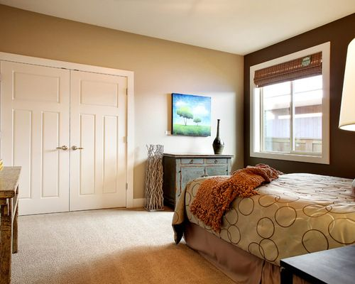 Traditional Bedroom Accent Wall Design Brown Wall Color Schemes Ideas