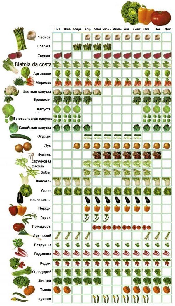 calendario-verdura.jpg (600×1045)