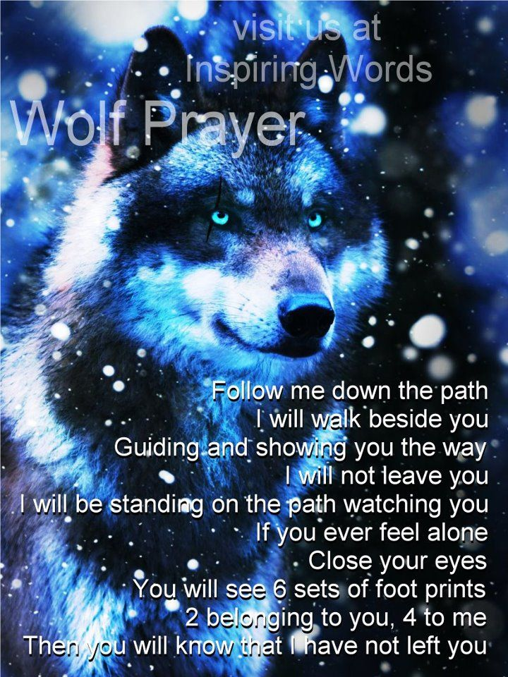 NATIVE AMERICAN WOLF PRAYER ~ Follow me down the path.  I will walk beside you.  Guiding and showing you the way.  I will not leave you.  I will be standing on the path watching you.  If you ever feel alone, close your eyes.  You will see 6 sets of foot prints.  2 belong to you, 4 to  me.  Then you will know that I have not left you.