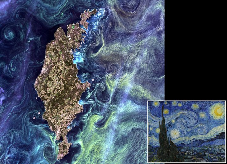 """NASA asked the public to vote on their favourite images from more than 120 images in the online 'Earth as Art' collection acquired by the Landsat programme over the last 40 years. The winner was this image, called Van Gogh from Space due to its similarity to Van Gogh's painting """"Starry Night"""". In the satellite photo, acquired on 13 July 2005, massive congregations of greenish phytoplankton swirl in the dark water around Gotland, a Swedish island in the Baltic Sea.  Picture: Landsat/NASABaltic Sea, Starry Night, Vincent Vans Gogh, Long Islands, Van Gogh, Earth, Deep Blue Sea, Swedish Islands, Nasa Goddard"""
