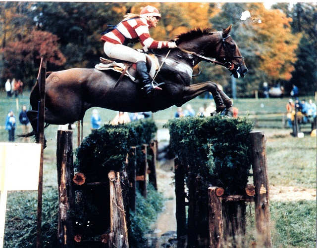 Old school eventing pictures give me goosebumps! Juliet Graham-Jones at Ledyard (1977)