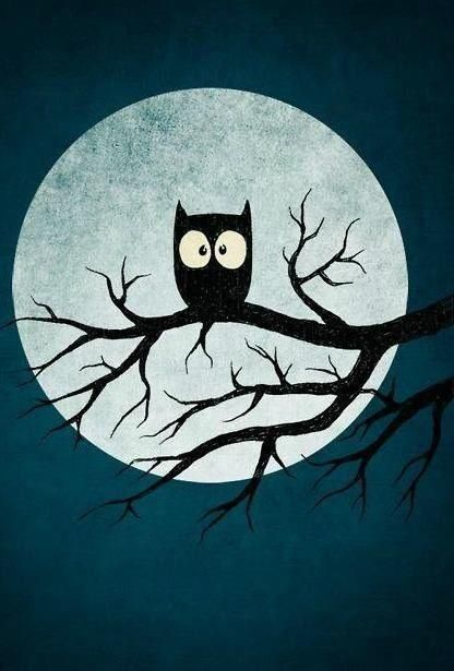 Owl and moon illustration