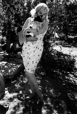 Marilyn Monroe during the filming of The Misfits: Eve Arnold, 46 Photos, Normajean, Beautiful Marilyn, Marilyn Monroe Photos, Norma Jeans, Misfits, Marilyn Monroe 21, Marilynmonro
