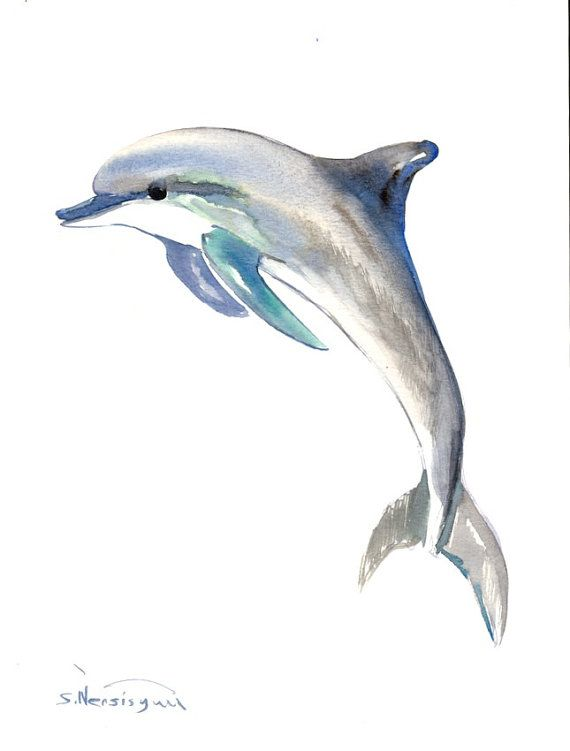 Dolphin Painting original watercolor painting 12 X by ORIGINALONLY