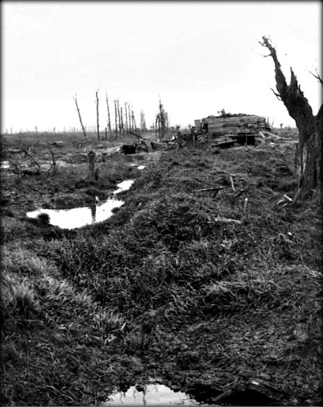 WWI;   Huns walk, Messines, in Belgium, November 1917. This area was captured by the 39th Battalion during the Battle of Messines, but at the date the photograph was taken it was held by the 14th Brigade. The concrete shelter seen in the right of the picture is a pillbox immediately facing Septieme Barn.  Cropped. AWM E01295