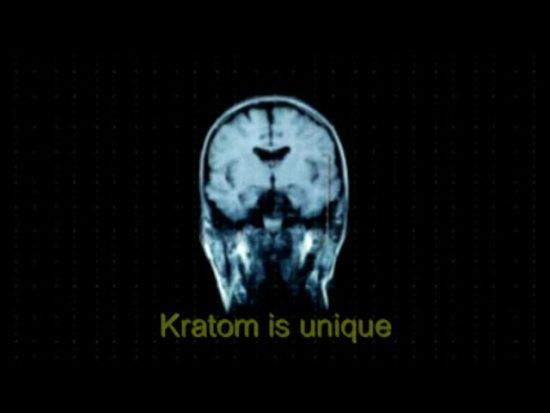 What is Kratom? | Addiction Blog