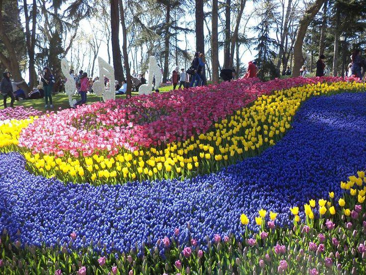 tulipán fesztivál, isztambul, istanbul, tulips http://istanbul.blog.hu/2015/04/13/viragbaborult_isztambul