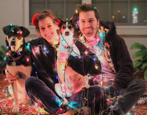 Charles And Alli Trippy With Their Dogs Marley Zoey Its A Very Christmas
