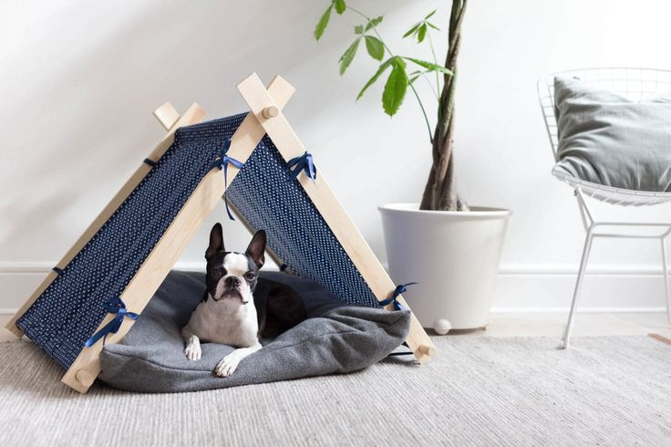 Cute dog tent | by Dnilva