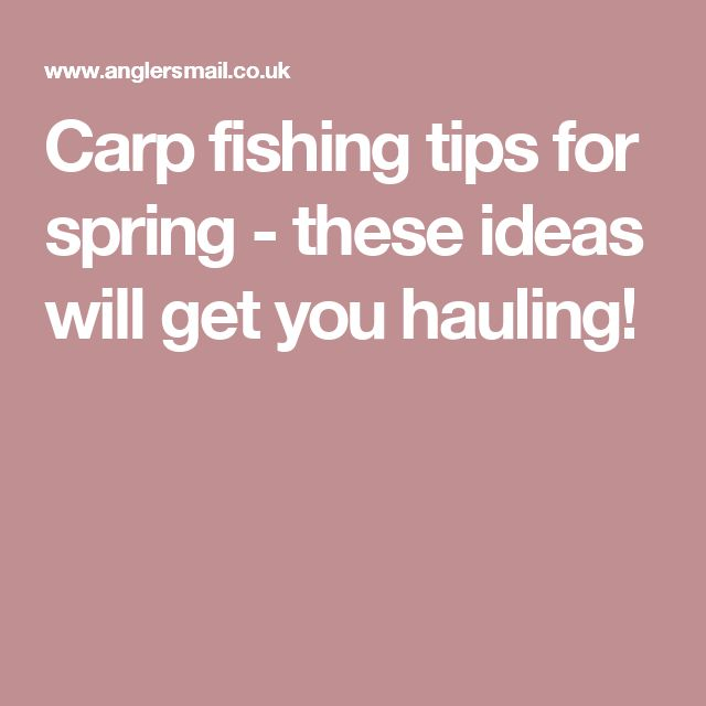 Best 20 Carp Fishing Tips Ideas On Pinterest