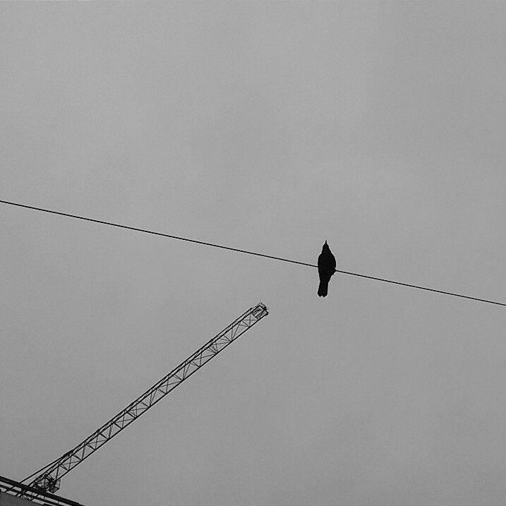 Urban Black and White