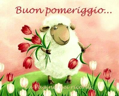 Good afternoon sister and all, enjoy your afternoon♥★♥.